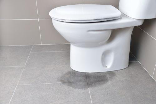 saniflo is leaking