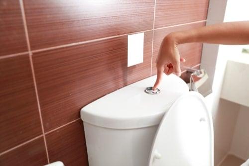 saniflo won't flush